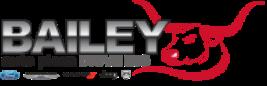 Bailey Auto Plaza 2